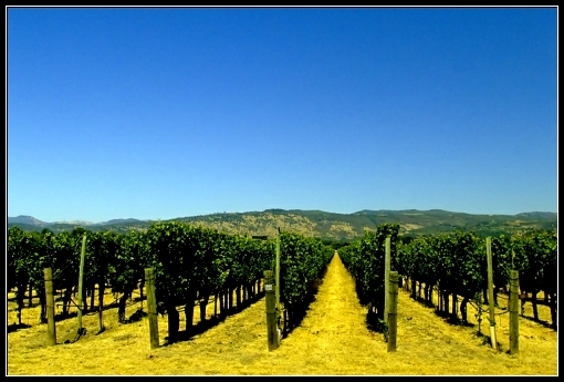 Retirement location-Napa