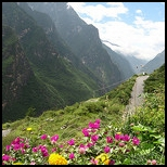 Retirement and Hiking-Tiger Leaping Gorge