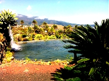 Retire in La Palma, Canary Islands