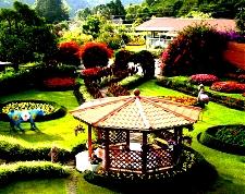 Retire in Panama, Boquete gardens