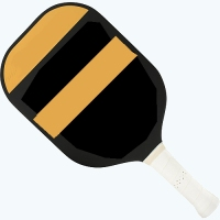 Retirement sport pickleball