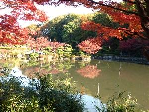 Retire in Japan