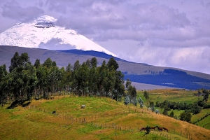 Retire in Ecuador