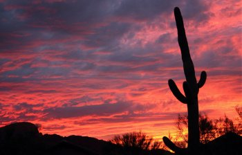 Retire in Tucson, Arizona