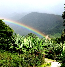 Retire in Panama, Boquete rainbow